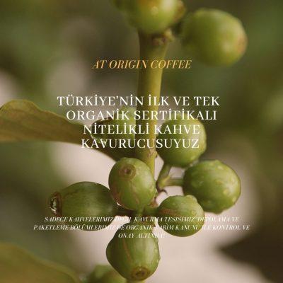 organik kahve